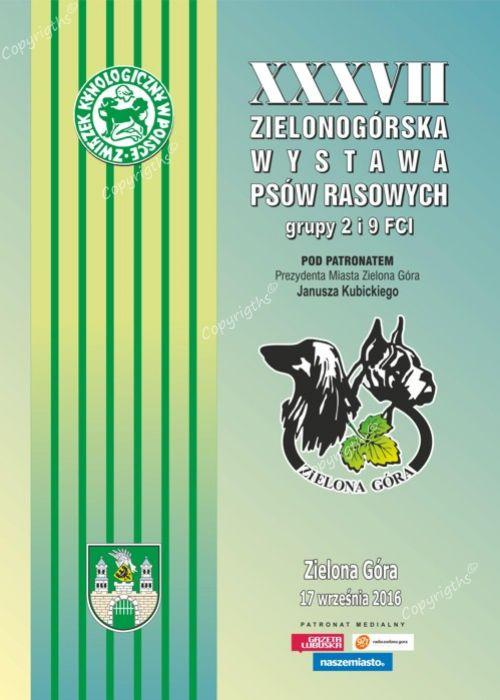 Chwalebne Krajowa Wystawa Psów 2 i 9. Grupy FCI Zielona Góra 17-09-2016 LP16