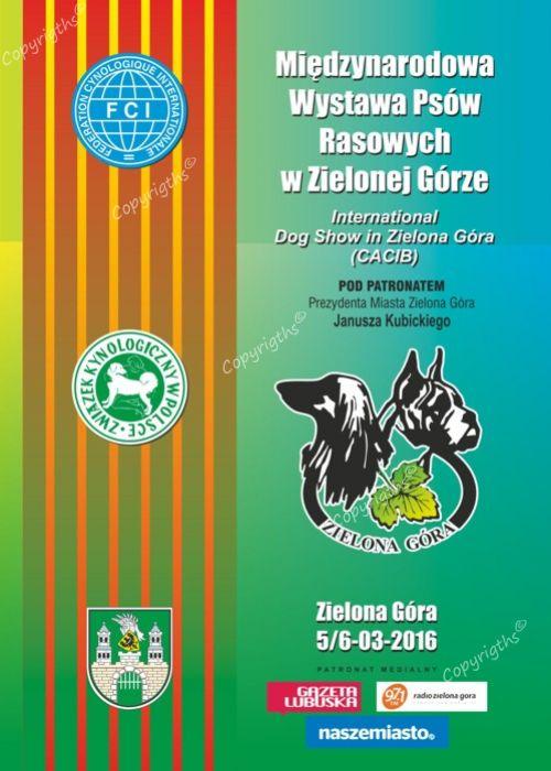 Modish Międzynarodowa Wystawa Psów RasowychZielona Góra 5/6-03-2016 HA54